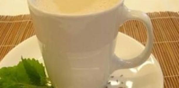 receita bebida de melissa com erva doce