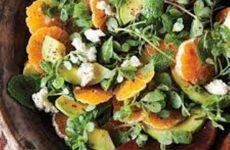 salada cítrica